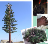 Tour galvanisée de palmier/tour arbre de pin pour la transmission