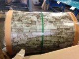 Höchste Vollkommenheit strich Galvanzied Stahlring PPGI für Gebäude-Dekoration vor