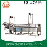 Máquina de lavar vegetal da bolha da explosão e da potência da água, arruela vegetal Tsxq-40
