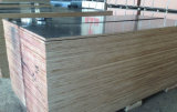 Colle phénolique de contre-plaqué de bouleau utilisée pour le béton