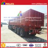 반 3개의 차축 석탄 수송 측 덤프 트럭 트레일러 (60/100T)
