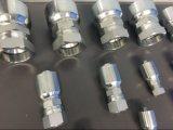 Mangueira hidráulica da fonte e conjunto apropriado hidráulico