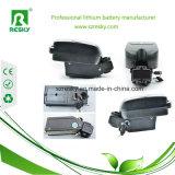 paquete de la batería recargable del ion del litio de la rana de 48V 8ah/10ah