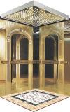 좋은 품질을%s 가진 기계 Roomless 가정 엘리베이터