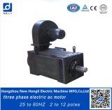 Мотор AC трехфазной скорости переменный 65kw 25-50Hz