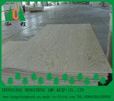 18mm buntes glattes lamelliertes feuerfestes HPL Furnierholz-/Furnierholz-Bauholz-Holz