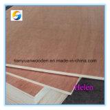 Qualität Bintangor Furnierholz-Blatt (1220X2440X18mm)