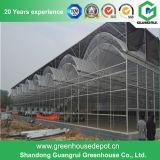 La vente chaude la meilleur marché serre chaude en plastique agricole/commerciale de Guangrui