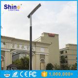 Gold Supplier Todos en un solar luces de la calle de la lámpara 5W-100W