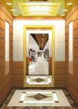 Ascenseur de passager de bonne qualité de Fujizy avec la Machine-Pièce-Moins de prix concurrentiel à faible bruit