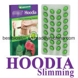 Hoodia Cactus Slimming Pill Weightloss Softgel Diet Capsules