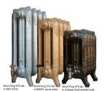 Radiateur de fer de moulage de créateur de chauffage de Chambre avec la configuration décorative