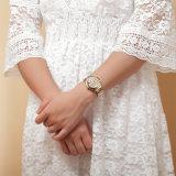 Belbi Form-Dame-Uhr-Höhlung-untere Diamant-Schmucksache-Faltenbildung-Quarz-Glasuhr