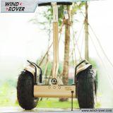 Chariot électrique X3 Chine Scooter pour Sell