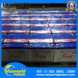 Elektrische Rasenmäher-Batterie Pack12V 24ah mit Hochleistungs-