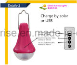 kit esterno solare solare solare di illuminazione del sistema domestico del sistema di illuminazione 12V LED con la batteria di litio