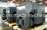 Schwanzloser Generator-Berufshersteller in China