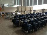 Pompe sanitaire Facile-Actionnée de sirop d'acier inoxydable