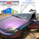 Accessori della vernice dell'automobile per uso della vernice dell'automobile di 1k 2k