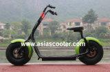 大人のための1000W 2お偉方の道駆動機構の電気スクーター