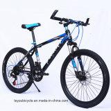 中国製高品質のマウンテンバイク(ly54)