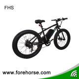E-Vélo de neige de plage avec le gros pneu/grand pouvoir
