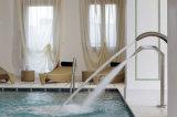 Elemento de impate dos TERMAS do aço inoxidável da piscina
