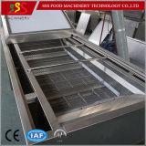Prix bon marché de l'acier inoxydable 304 de machine automatique de lavage du poisson