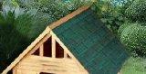 Casa de madera del patio trasero al aire libre para el perro