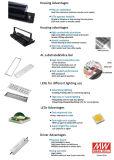 Indicatore luminoso di inondazione esterno del traforo del proiettore LED di IP65 100W LED