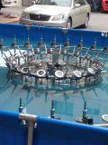 Puede ser la fuente de interior modificada para requisitos particulares de la música del agua