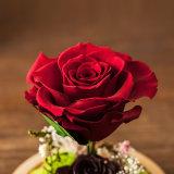Fiore naturale di 100% Handmade per la decorazione di festa
