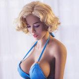 Шкафута ишака груди аттестации 165cm Ce кукла секса Lifelike большого большого тощего реальная