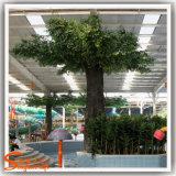 Arbre de banian artificiel en plastique d'arbre de Ficus de fournisseur de la Chine