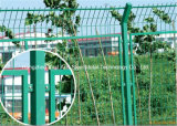 Ячеистая сеть 0 высокого качества Haohan декоративная гальванизированная стальная