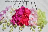 La seta artificiale del fiore dell'orchidea di alta qualità 2017 fiorisce l'orchidea di lepidottero per la decorazione
