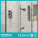 Douche populaire de rectangle glissant la Chambre avec le bâti d'alliage d'aluminium (SE905C)