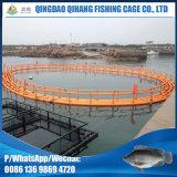 Gaiola de flutuação dos peixes do uso da piscicultura das armadilhas da cultura aquática