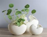 O escudo de ovo cerâmico moderno branco creativo Handmade do vaso deu forma para o vaso Unglazed terminado Matt do potenciômetro de flor das decorações das HOME