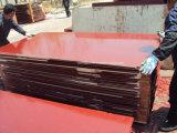 1220*2440*12mm Qualitätspreiswertes Marineaufbau-Furnierholz
