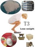 T4 L - 뚱뚱한 CAS 51-48-9 Weight&#160 분실을%s 뚱뚱한 가열기 스테로이드를 점화하는 티록신 스테로이드;