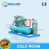 Weg im Koller Abkühlung-Kühlraum für Eis-Block-Würfel-Speicher