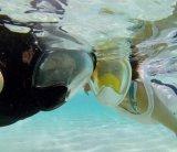 Mascherina asciutta completa navigante usando una presa d'aria di immersione subacquea della mascherina