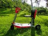 """""""trotinette"""" elétrico do triciclo Foldable Transformable, """"trotinette"""" da mobilidade da forma, """"trotinette"""" da bagagem, """"trotinette"""" elétrico da mobilidade da cidade"""