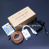 La chaîne de caractères blanche chaude à télécommande imperméable à l'eau de Dimmable DEL de câblage cuivre allume DC12 V