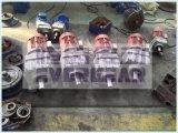 La alta precisión cose la caja de engranajes helicoidal larga del mezclador de la vida de servicio de la serie similar de R