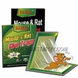 Panneau de trappe de colle de souris/rat