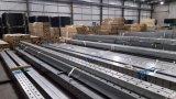 Гальванизированные стальные длиной пробитые ограждая рельсы