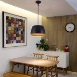 Hängen des Nordic-LED/Absinken/Aufhebung-Anhänger-Licht des Lampen-Dachboden-Eisen-LED