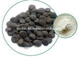 صافية طبيعيّ [ويغت لوسّ] [غريفّونيا] بذرة مقتطف [5-هدروإكستربتوفن] 98% 5 [هتب]